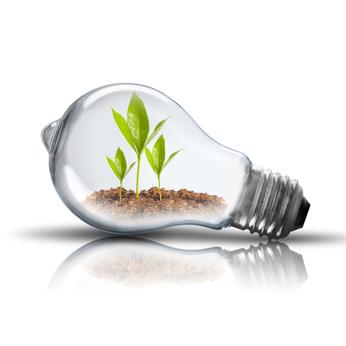 Écoconstructions et énergies renouvelables : pour un avenir plus radieux